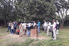 Diary: Food Security Center